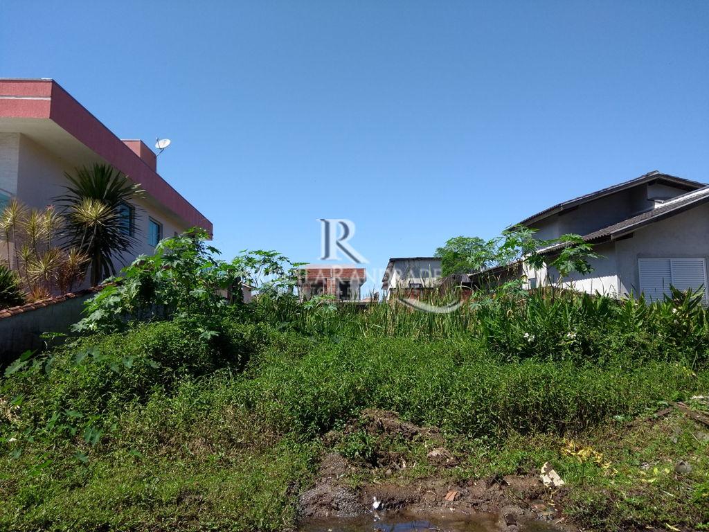 Ref. PR325 -
