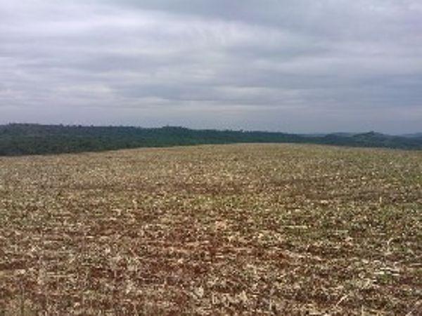 Rural Fazenda